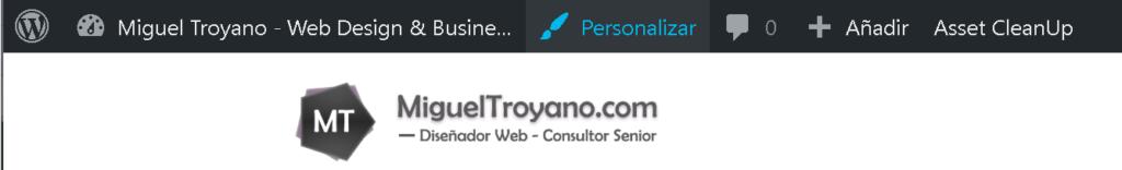 Opción personalizar wordpress